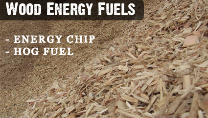 Wood_Energy_Chip_hog_fuels_new_Zealand_wide